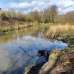 Land & Water celebrates winning five-year contract with Surrey County Council